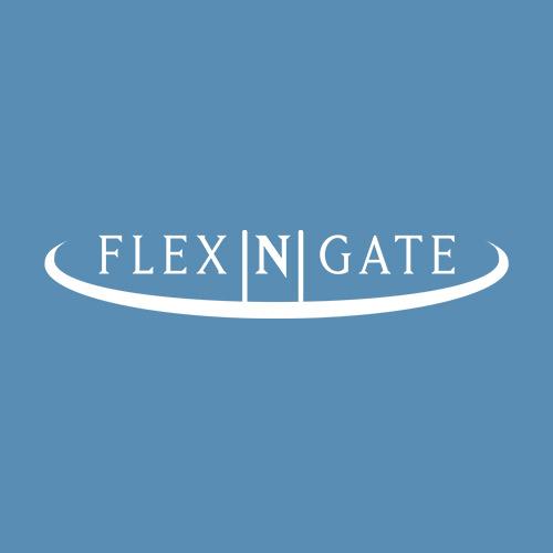Flex-N-Gate Argentina